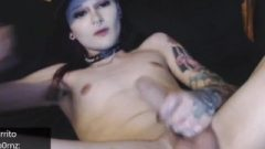 Tattooed Femboy Shows Us Off Her Ass-Hole And Penis On Chaturbate